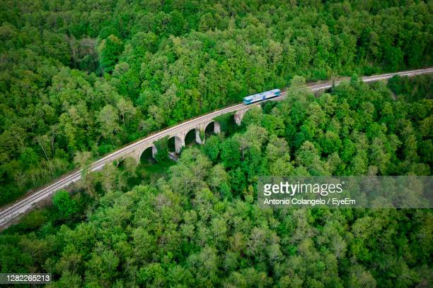 high angle view of rrailway amidst trees in forest - rail transportation stock pictures, royalty-free photos & images