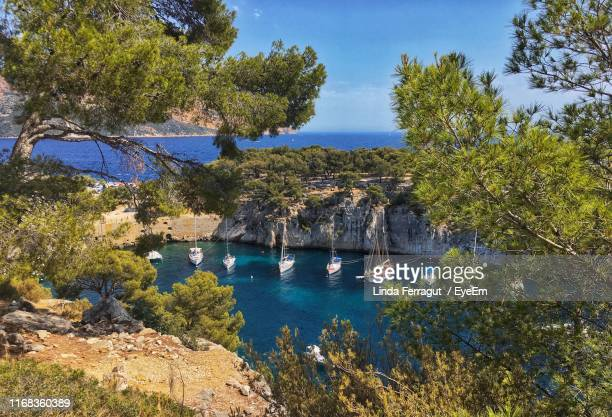 high angle view of sailboats by sea against trees - bouches du rhone stock pictures, royalty-free photos & images