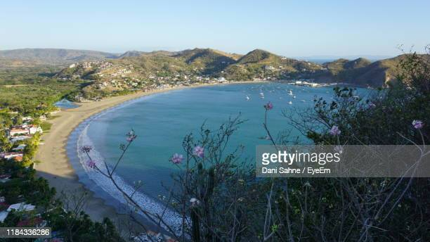 high angle view of sea and trees against sky - sahne stock pictures, royalty-free photos & images
