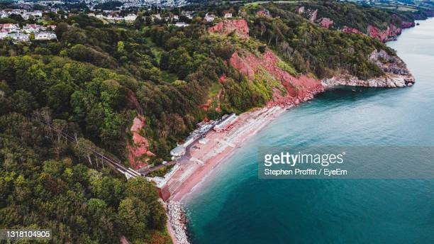 high angle view of sea and trees - cliff stock pictures, royalty-free photos & images