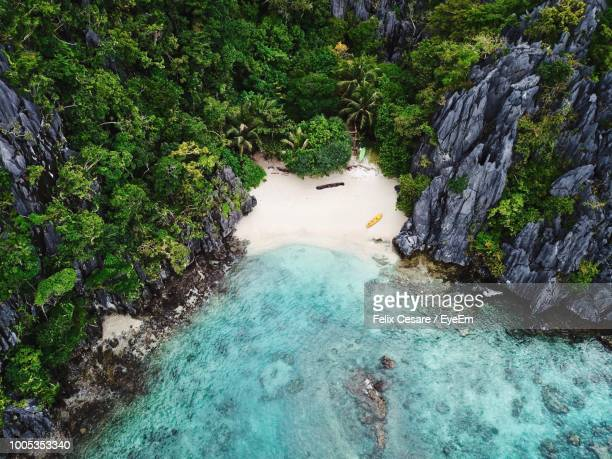 high angle view of sea by trees - cebu stock photos and pictures