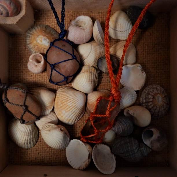 High angle view of seashells on table,United Kingdom,UK