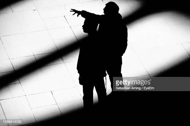 high angle view of silhouette man standing on tiled floor - congress stock pictures, royalty-free photos & images