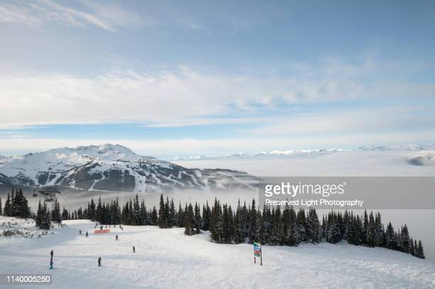 high angle view of skiers, whistler blackcomb ski resort, british columbia, canada - sport d'hiver photos et images de collection