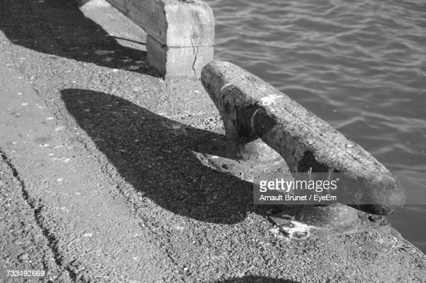 high angle view of snake on sea shore - arnault stock pictures, royalty-free photos & images