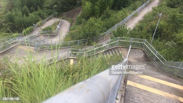 High Angle View Of Steps And Trees