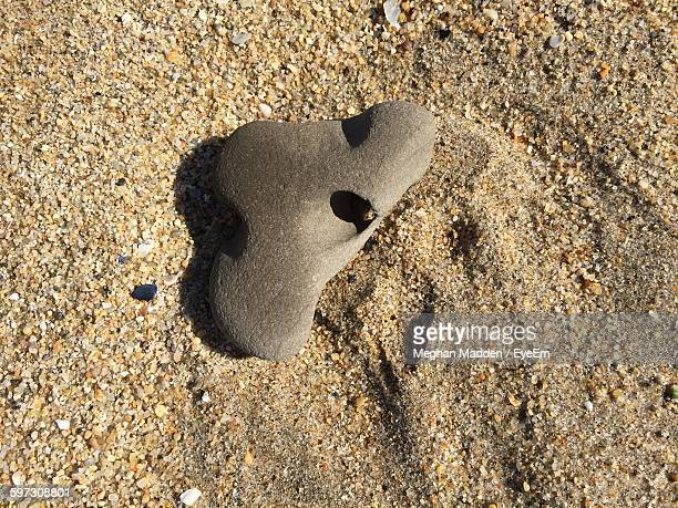 high angle view of stone with hole on beach - meghan stock photos and pictures
