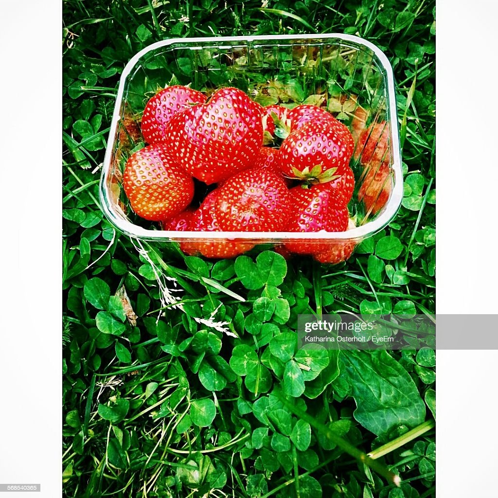 High Angle View Of Strawberries In Box : Stock Photo