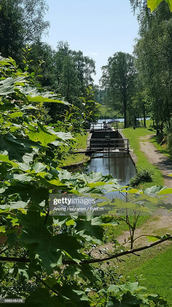 High Angle View Of Stream Amidst Field In Park : Foto de stock