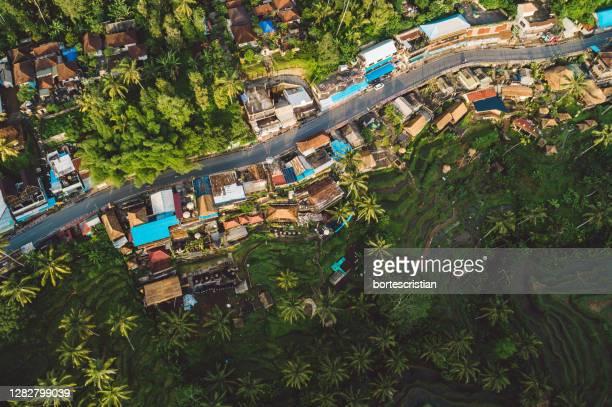 high angle view of street amidst trees in city - bortes foto e immagini stock