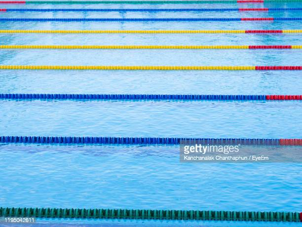 high angle view of swimming pool - length stock pictures, royalty-free photos & images