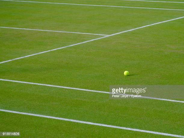 high angle view of tennis ball on grassy field - wimbledon stock pictures, royalty-free photos & images