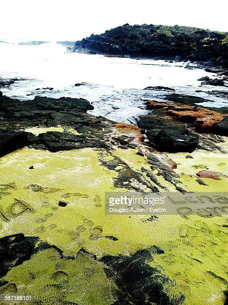High Angle View Of Text And Footprints On Green Sand Amidst Rocks At Papakolea Beach