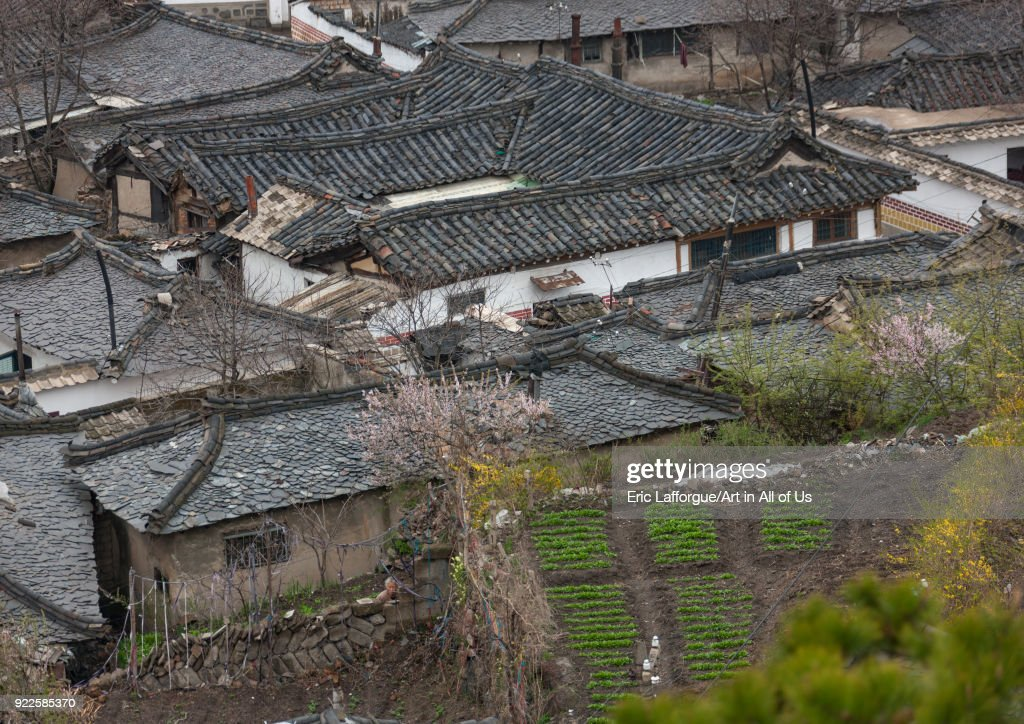 High Angle View Of The Korean Houses In The Old Town North Hwanghae