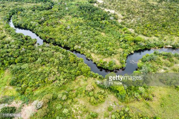 high angle view of the landscape of cerrado in tocantins, brazil - cerrado stock pictures, royalty-free photos & images
