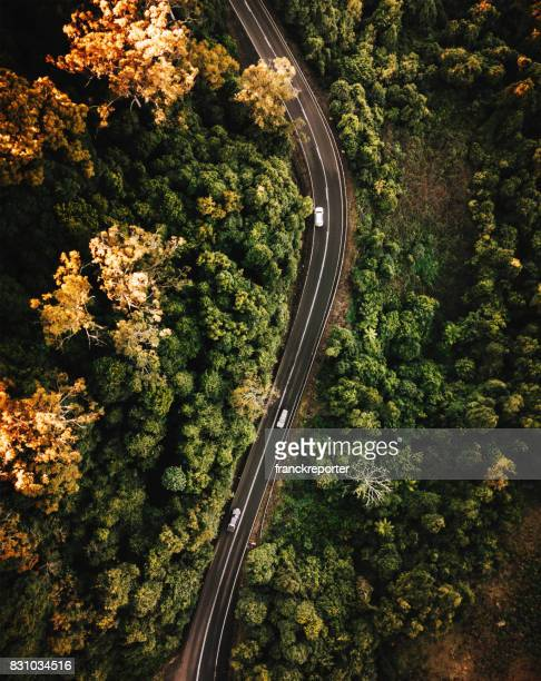 high angle view of the road in australia in autumn - queensland stock pictures, royalty-free photos & images