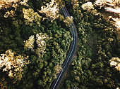 high angle view of the road in australia in autumn