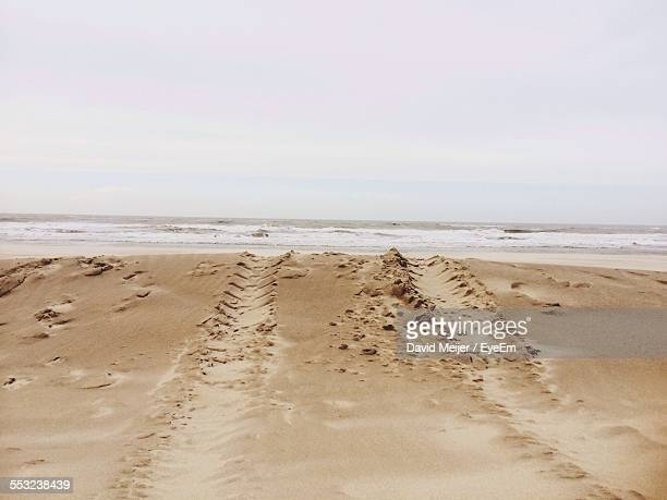 High Angle View Of Tire Tracks On Sandy Beach