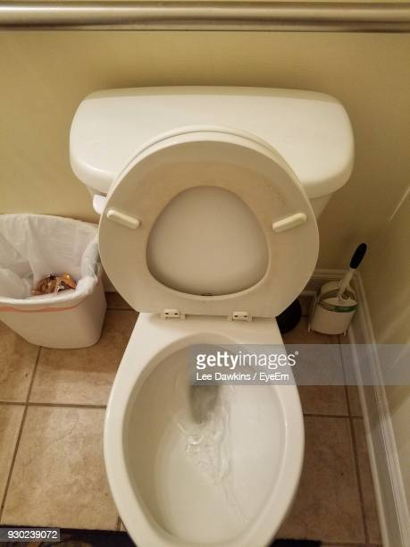 high angle view of toilet in bathroom - toilet bowl stock photos and pictures