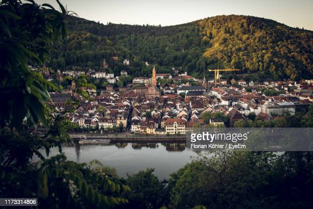 high angle view of townscape and trees in town - baden württemberg stock-fotos und bilder