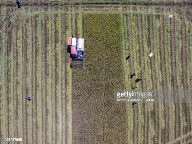 high angle view of tractor on field - sloppy joe, jr stock pictures, royalty-free photos & images