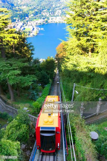 High Angle View Of Train On Track Amidst Trees