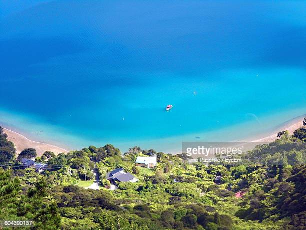 High Angle View Of Trees Against Calm Blue Sea