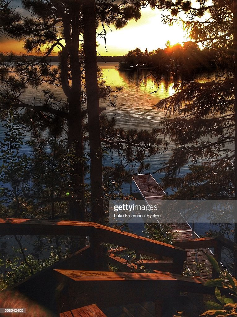 High Angle View Of Trees Against Lake During Sunset : Stock Photo