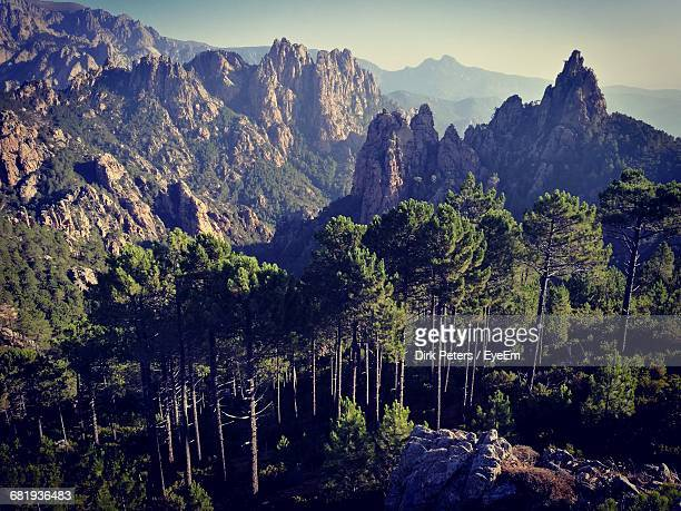 high angle view of trees against rocky mountains - corsica stock-fotos und bilder