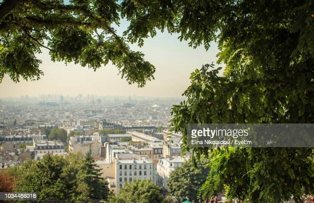 high angle view of trees and buildings in city - ile de france photos et images de collection