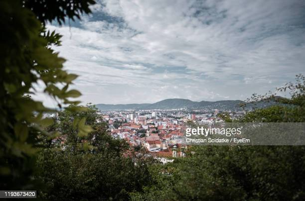 high angle view of trees and buildings in city - christian soldatke stock pictures, royalty-free photos & images
