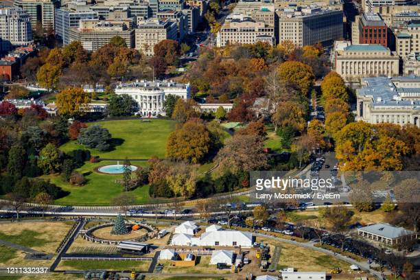 high angle view of trees and buildings in city - washington dc stock pictures, royalty-free photos & images
