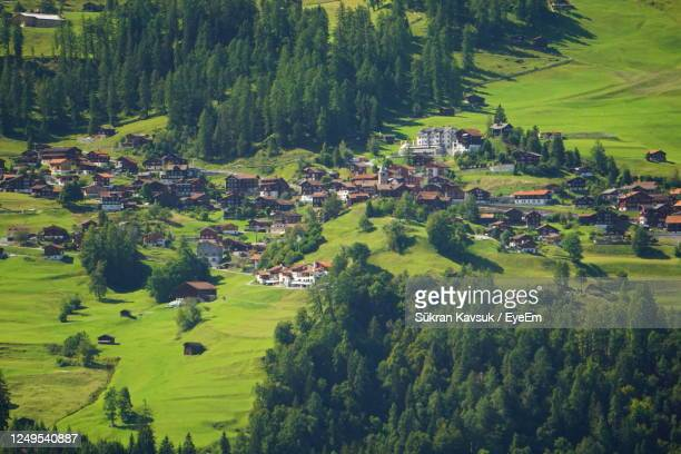 high angle view of trees and houses on field - アロサ ストックフォトと画像