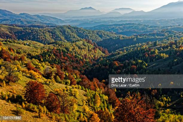 High Angle View Of Trees And Mountains