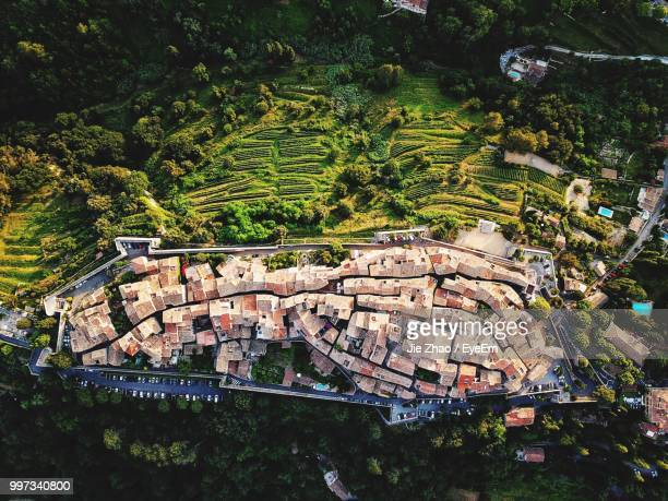high angle view of trees and plants growing on field - rouen stock pictures, royalty-free photos & images