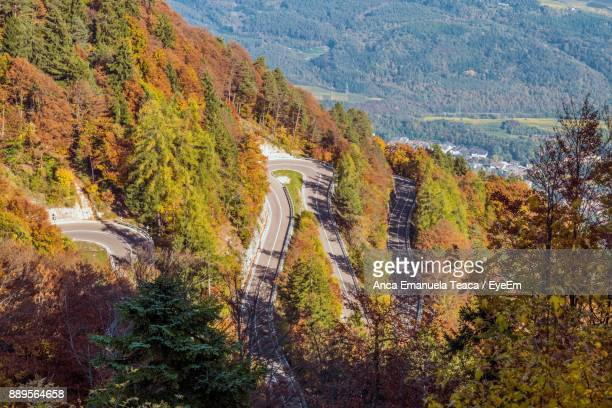 High Angle View Of Trees And Road In Forest During Autumn