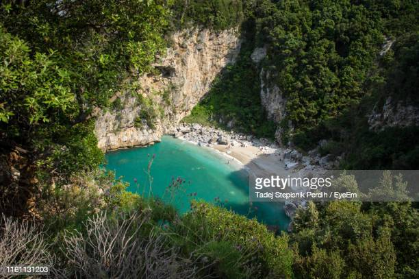 high angle view of trees by sea - volos stock pictures, royalty-free photos & images