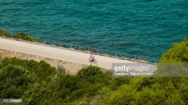 high angle view of trees by sea - benicassim stock pictures, royalty-free photos & images