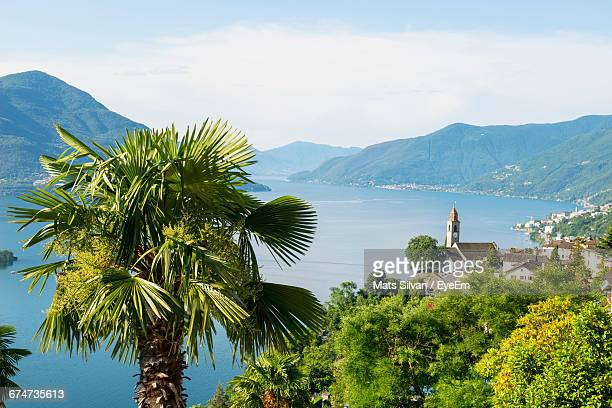 high angle view of trees growing by alpine lake against sky - ascona stock pictures, royalty-free photos & images