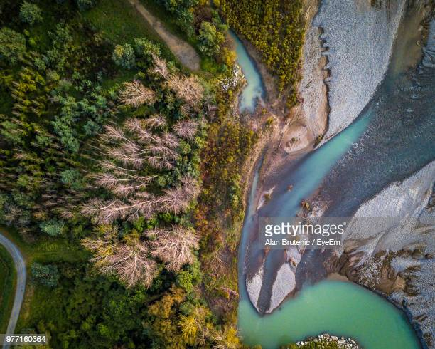 high angle view of trees on land - marlborough new zealand stock pictures, royalty-free photos & images