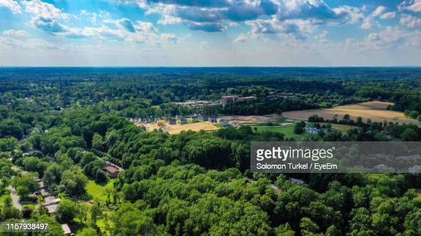 high angle view of trees on landscape against sky - solomon turkel stock pictures, royalty-free photos & images