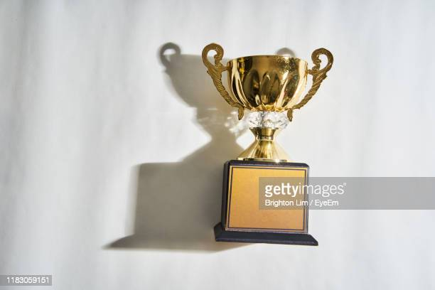 high angle view of trophy on table - trophy stock pictures, royalty-free photos & images