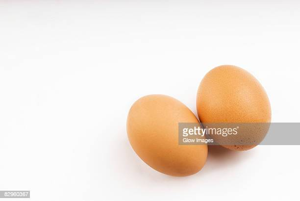 High angle view of two brown eggs