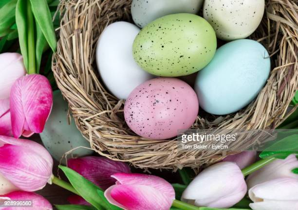 high angle view of various flowers and easter eggs on table - easter egg stock pictures, royalty-free photos & images