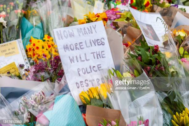 high angle view of various flowers in shop - memorial vigil stock pictures, royalty-free photos & images