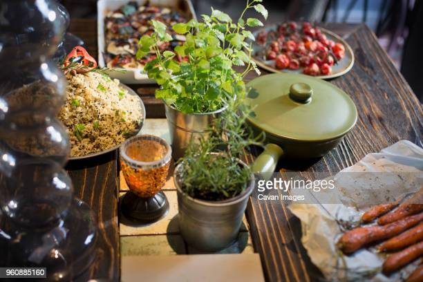 High angle view of various food served by potted plants on table in home
