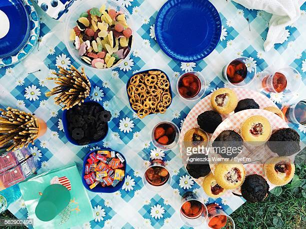 high angle view of various foods on table - picnic blanket stock pictures, royalty-free photos & images