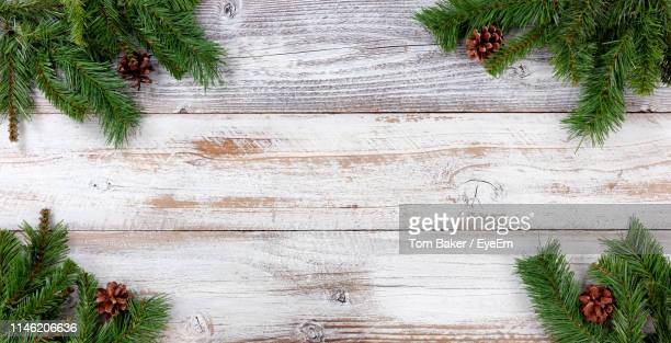 high angle view of vegetables on table against wall - christmas wallpaper stock pictures, royalty-free photos & images