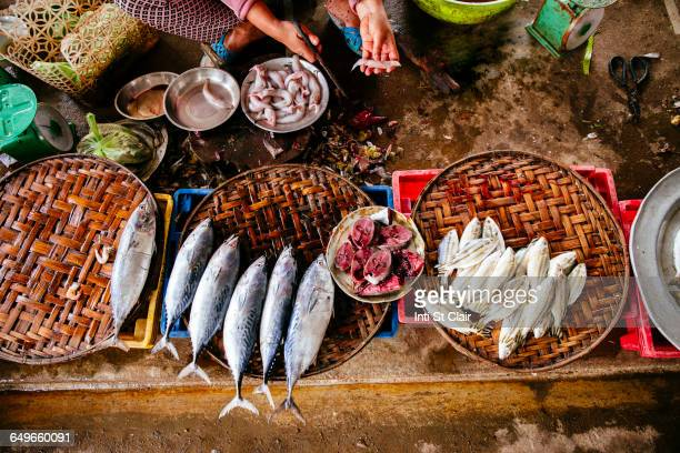High angle view of vendor cleaning fish