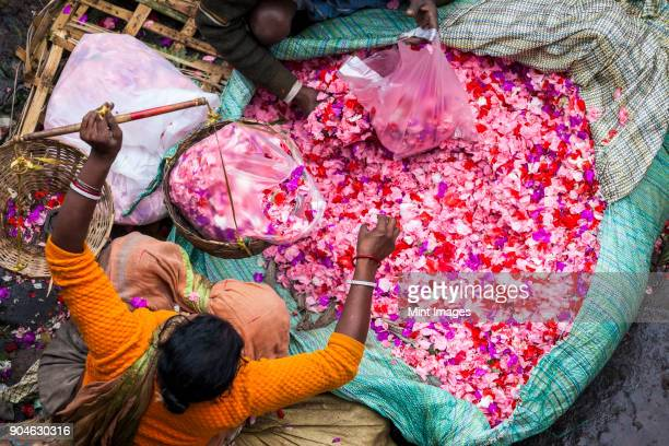 high angle view of vendor selling pink flower petals at a street market. - india market stock photos and pictures
